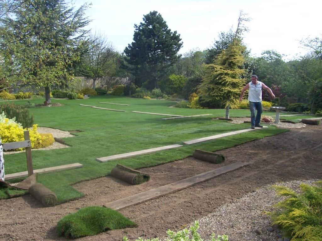 Lawn_turf_garden